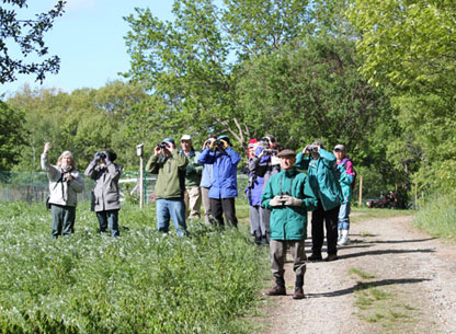 Photograph of a Birdwalk led by Alison Leary